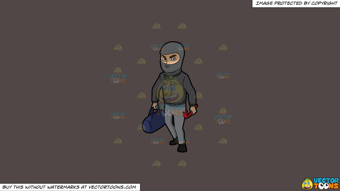 A Robber With His Tools On A Solid Quartz 504746 Background thumbnail