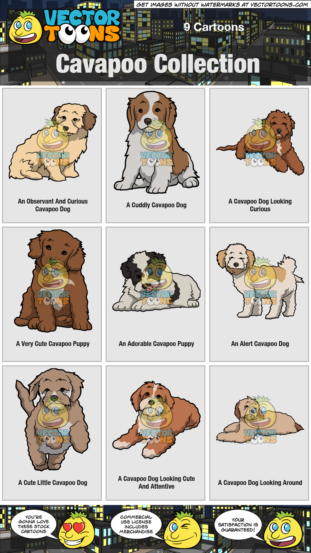 Cavapoo Collection thumbnail