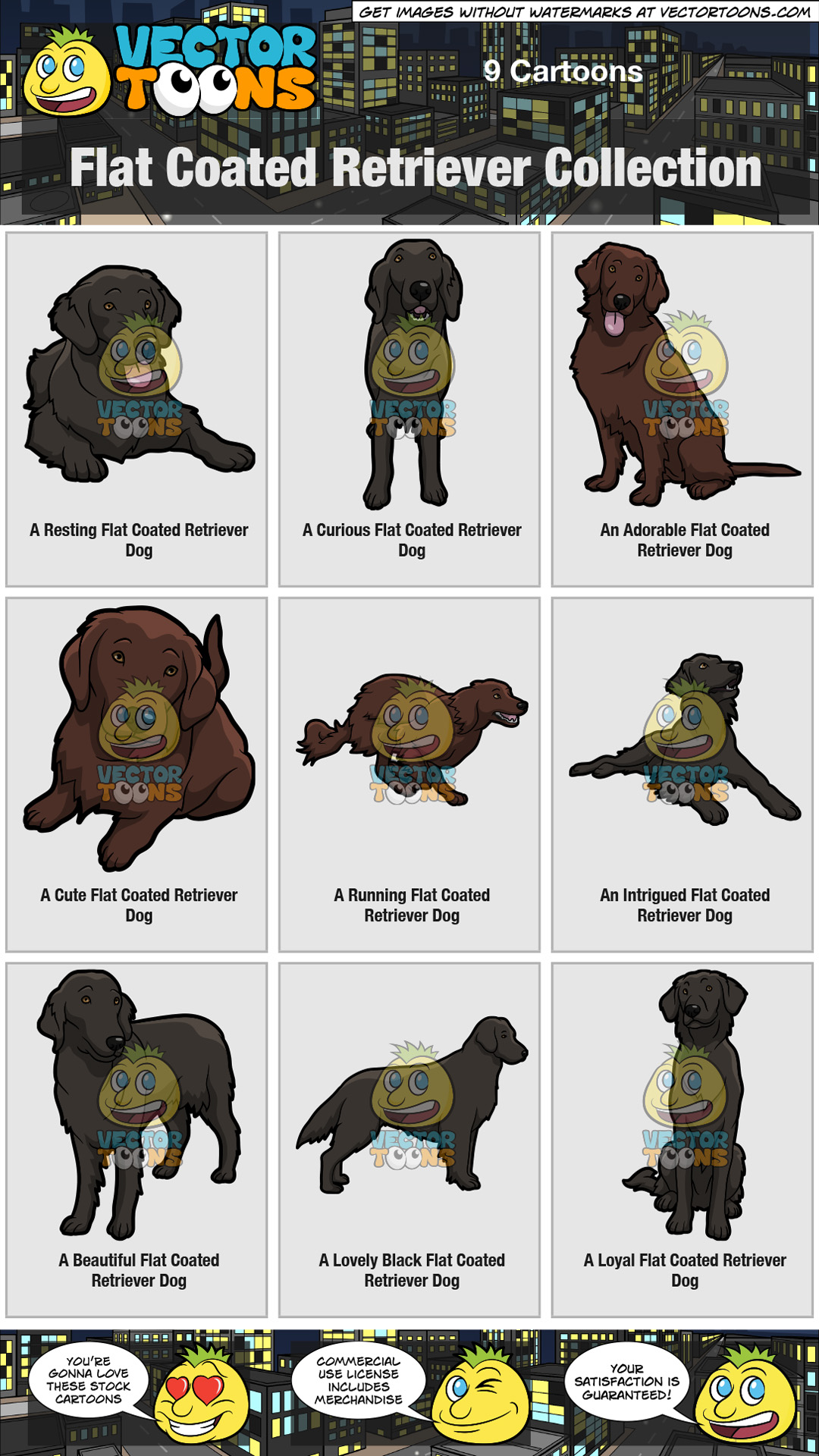 Flat Coated Retriever Collection thumbnail